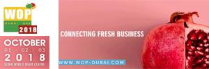Banner – WOP Dubai 2018